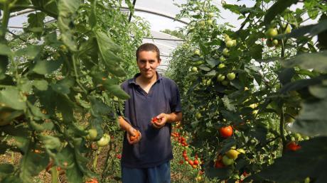 Seine verschiedenen Tomatensorten liegen Jonas Machnik vom Friedelhof in Eurasburg-Hergertswiesen besonders am Herzen.