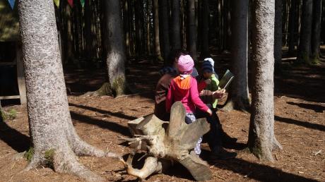 In einer Waldgruppe werden die kleinen Kinder hauptsächlich draußen betreut.