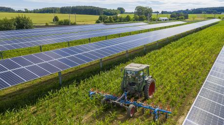 Durch die deutschlandweit erste Agro-Photovoltaik-Anlage in Althegnenberg soll grüner Strom entstehen.