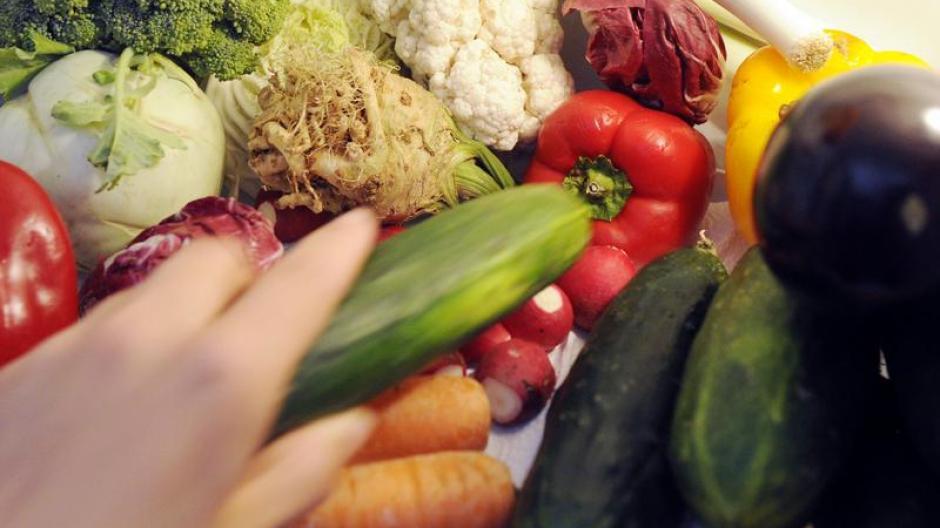 Veggie Sommerküche : Ernährung: zucchini in der sommerküche gesundheit themenwelten