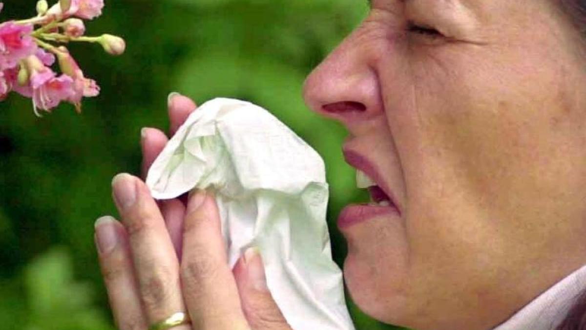 heuschnupfen kreuzallergie warum pollenallergiker auch wegen pfeln niesen m ssen. Black Bedroom Furniture Sets. Home Design Ideas
