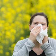Juckende Nase, geschwollene Augen und Atemnot: Heuschnupfen-Symptome sollten nicht ignoriert werden.