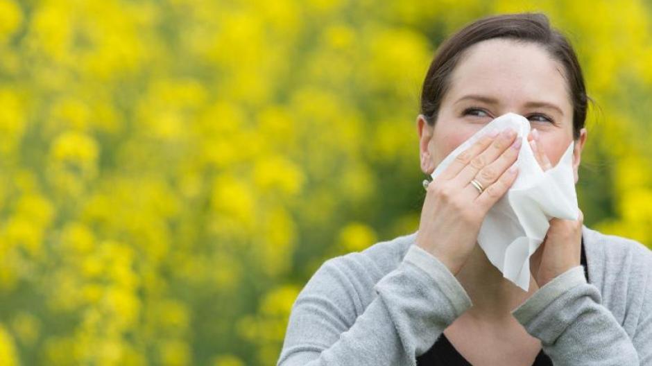 Neben der Hygiene sind Allergien auch auf Umweltfaktoren wie Pollen zurückzuführen. Foto: Friso Gentsch