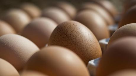 """Edeka und Rewe rufen Eier des Unternehmens """"Thomas Dinkel"""" wegen Gesundheitsgefahr zurück."""