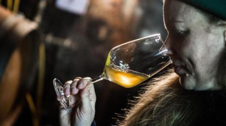 Als sie das Weingut ihres Vaters in Biebelnheim (Kreis Alzey-Worms) übernahm, legte Hanneke Schönhals 2016 ihren ersten Orange-Wein in ein Barrique-Fass.