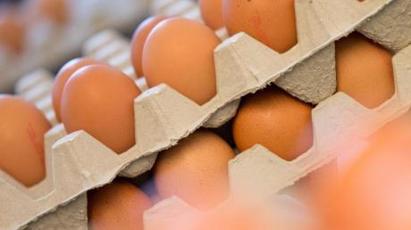 Aldi schraubt an den Eierpreisen. Weitere Händler dürften dem Beispiel folgen.