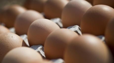 Seit 2014 verkauft Reinhold Herdegger Eier, es begann mit einem Kühlschrank vor seinem Haus in Weißenhorn.