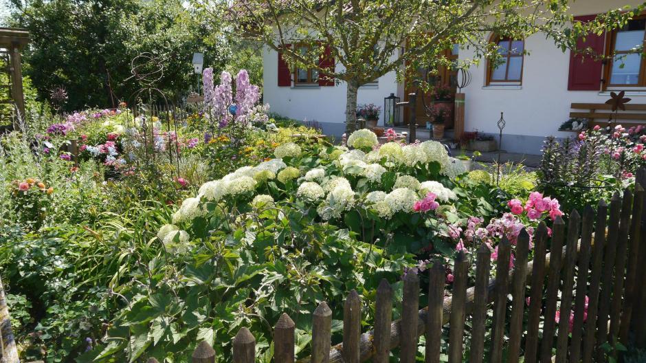 Kreis Günzburg: Schöne Gärten tragen zu einem guten Klima ...