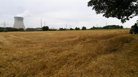 Auf diesem Areal südwestlich des Kernkraftwerks Gundremmingen wird sich der Holz-Großhändler Scheiffele-Schmiderer aus Dillingen ansiedeln.