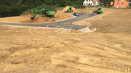 Im neuen Baugebiet in Rechbergreuthen wird bald eine Blumenwiese auf den Grundstücken blühen, solange sie noch nicht verkauft sind.