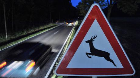 Spätestens wenn dieses Schild auftaucht, sollten Autofahrer langsamer und vorausschauend fahren.