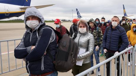 Erntehelfer aus Rumänien, die nach Deutschland gekommen sind. Die Zahl der Arbeiter aus Osteuropa dürfte aber nicht reichen.