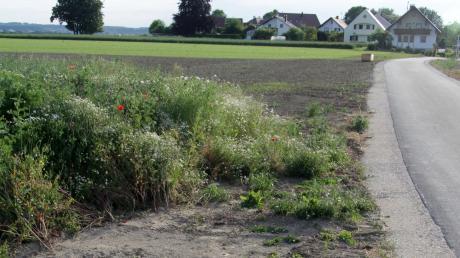 Auf dieser Fläche am östlichen Ortsrand des Ichenhauser Stadtteils Deubach entsteht ein neues Gewerbegebiet, das der Stadtrat beschlossen hat.