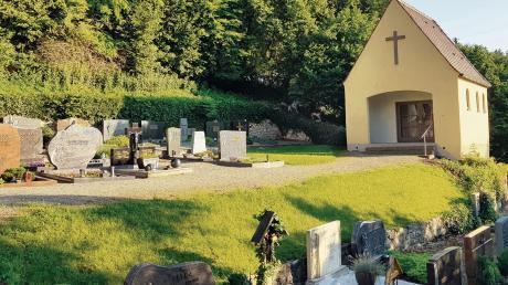 Am frühen Morgen war das Damwild wieder auf dem Neuburger Friedhof links neben dem Leichenhaus zu sehen. Es zog aber sofort ab, als der Fotograf sich näherte.
