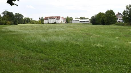 Burgauer Stadtratsmitglieder würden die Angerwiesen gerne zum Naherholungsgebiet machen.