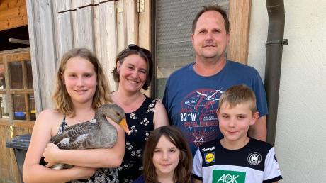 Seit April zu sechst: Die dreizehnjährige Lea, Mutter Tanja, die achtjährige Anna, Vater Michael und der zehnjährige Jakob (von links) mit dem neuen Familienmitglied, dem Wildgänserich Günter.
