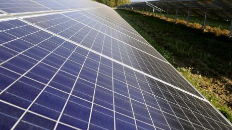 Mehr als elf Fußballfelder groß werden soll der Solarpark bei Rechbergreuthen.