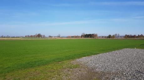 Auch der Rasen wurde komplett erneuert.