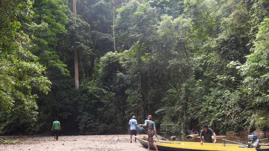 Günzburger Verein setzt sich seit 20 Jahren für den Schutz des Regenwalds ein