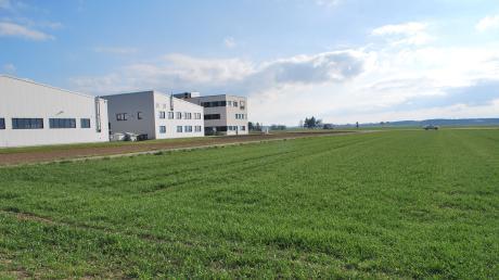 Noch – oder im Hinblick auf die Jahreszeit schon – ist der Acker grün, geplant wird auf dieser Fläche nördlich des Gewerbegebiets von Großkötz an der Straße nach Bubesheim der Bauhof der Gemeinde Kötz.