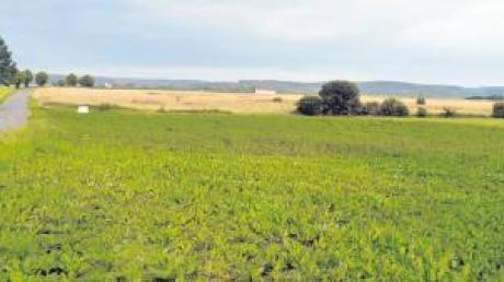 """Am Ortsrand von Zaiertshofen Richtung Ebershausen liegt das Baugebiet """"Zaiertshofen Süd-Ost"""" mit vier geplanten Bauplätzen."""