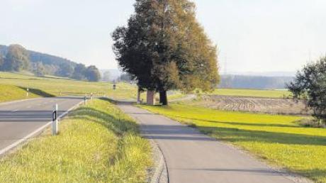 Die für die Gemeinde Oberroth anfallenden Kosten für den Radwegbau nach Babenhausen werden vom Freistaat mit knapp 60 Prozent bezuschusst.