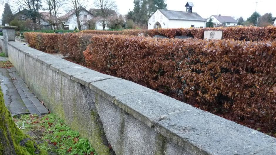 Altenstadt Zaun Oder Hecke Was Soll Um Den Friedhof Verlaufen