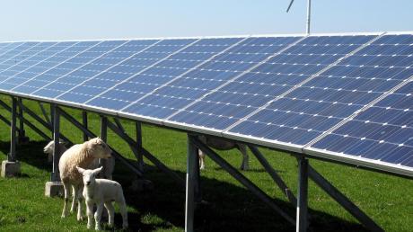 Im Landkreis Unterallgäu soll noch mehr auf erneuerbare Energien gesetzt werden. Dabei sollen vor allem Photovoltaikanlagen und Biogasanlagen eine Rolle spielen.