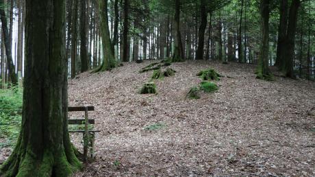 Die Hügelgräber bei Kadeltshofen sind 2000 Jahre alt. Dass bis heute einige erhalten sind, ist nicht selbstverständlich – denn immer wieder werden Stätten zerstört.