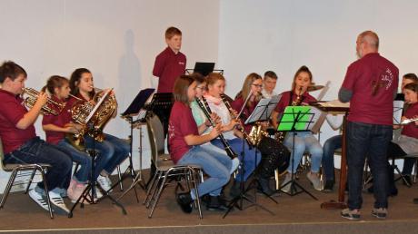 Das Vorstufenorchester der Stadtkapelle Illertissen bei seinem Jahreskonzert unter der Leitung von Wolfgang Paulus.