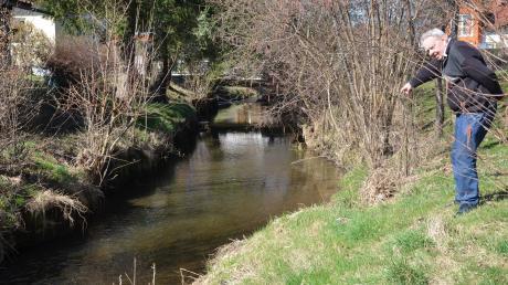 Direkt am Grundstück von Adalbert Vill in Unterroth fließt die Roth vorbei. Er zeigt Flussbettaufweitungen, wo der Fluss zu mäandern beginnt.