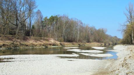 Aus Kies wurde in der Iller nahe Filzingen eine neue Fliesrinne modelliert. In diesem überarbeiteten Flussbett sollen neuen Laich- und Jungfischhabitate entstehen.