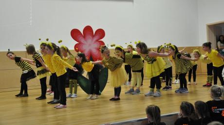 Die Tanzmäuse des TSV Illertissen begeisterten das Publikum als Bienchen. Sie waren eine von 15 Gruppen, die beim 1. Rothtal-Dance-Cup in Oberroth aufgetreten sind.