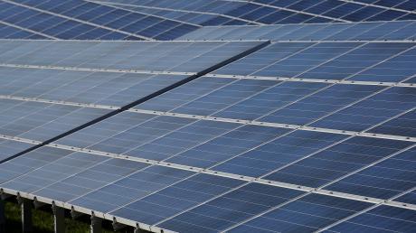 Wird es so einen Solarpark bald in Illerberg geben? Noch steht das nicht fest.