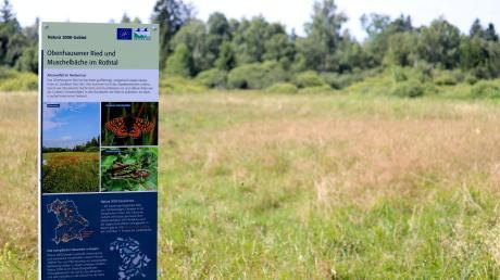 Weisen auf das schützenswerte Gebiet hin: Neue Infotafeln wurden im Obenhausener Ried aufgestellt.