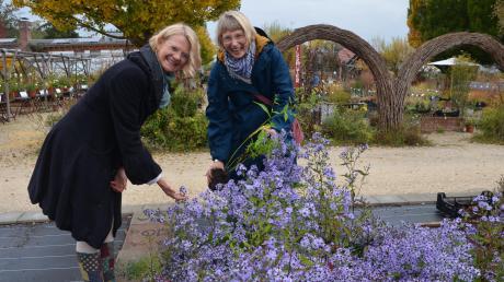 Andrea Nitsche-Lorenz und Susanne Prell aus Augsburg wollen sich auf der Jungviehweide mit allerlei Pflanzen eindecken.