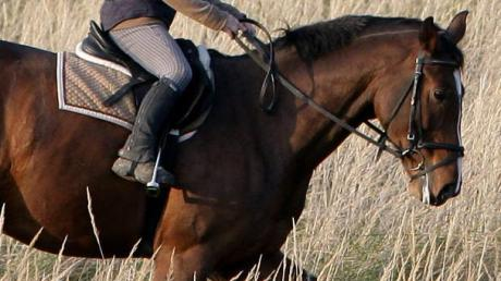 SYMBOLFOTO Eine junge Reiterin war am Sonntag nahe Dietenheim unterwegs. Ein Unbekannter entblößte sich vor ihr.