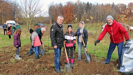 Mit vielen neuen Bäumen gegen den Klimawandel: Auf einem 1,7 Hektar großen Areal des Landkreises Neu-Ulm bei Unterroth werden 8100 Eichen, Linden, Hainbuchen, Esskastanien und Wildäpfel gepflanzt.
