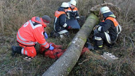 Bei dieser Übung geht es darum, eine Person zu retten, die bei Forstarbeiten von einem Baum eingeklemmt wurde.