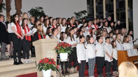 Für einen stimmungsvollen Abschluss sorgten die rund hundert Mitwirkenden mit einem gemeinsamen Lied.