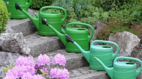 Der trockene Frühling schafft im Garten Probleme. Jetzt hilft nur gießen, gießen, gießen.