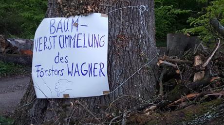 Der Kreisvorsitzende des Bundes Naturschutz, Bernd Kurus-Nägele, hat mit einem Protestplakat auf den starken Rückschnitt einer 180 Jahre alten Eiche bei Dattenhausen hingewiesen.