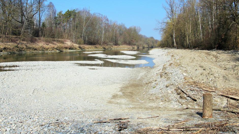 Etwas trister sah die Pilotstrecke des Projekts Agile Iller im Winter aus. Jetzt ist der Fluss mit Leben gefüllt.
