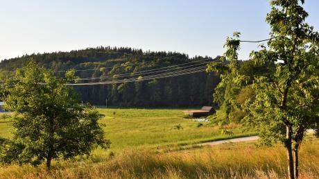 Die Firma Raiss wird sich am Waldrand im Bereich des Kellmünzer Gewerbegebiets Kälberweide ansiedeln. Seinen bisherigen Standort in Neu-Ulm gibt das Unternehmen mit Stammsitz in Thannhausen auf.