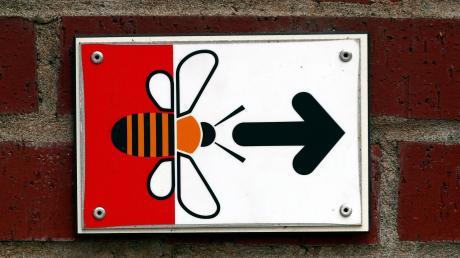 Den Weg ins Illertisser Bienenmuseum können jetzt wieder mehr Besucher nehmen.