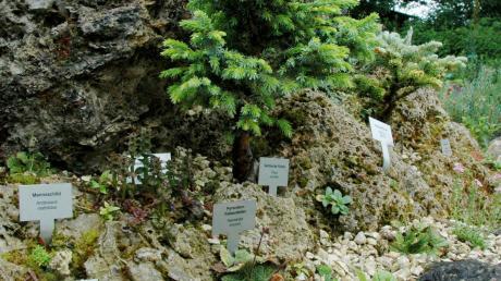 Unter anderem erhält der Kreismustergarten in Weißenhorn dieses Jahr Geld aus der Leader-Förderung.