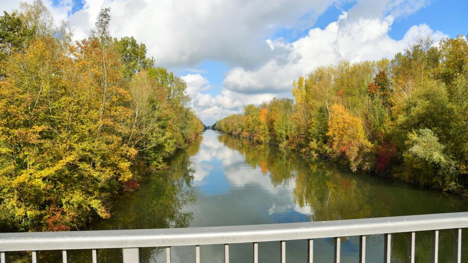 An der Iller bei Altenstadt soll eine 1,3 Kilometer lange, gerade Flussstrecke zu einem sich dahinschlängelnden Flussverlauf umgebaut werden.