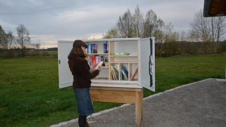 """Hinter den Türen des bei der neuen Freizeitanlage """"Natur und Mensch"""" platzierten offenen Bücherschranks findet man eine Auswahl an unterschiedlichen Werken."""