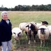 Barbara Werner lernte während ihres vierwöchigen Hofaufenthalts das Landleben zu schätzen. Insbesondere das Brotbacken hat es ihr angetan. Davon profitiert nun auch ihr Mann zu Hause.