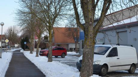 In Bellenberg sollen vier Kastanienbäume gefällt werden, weil Laub und Früchte parkende Autos beschädigen. Nun gibt es wieder Hoffnung für die Bäume.